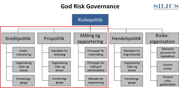 God Risiko Governance