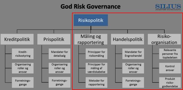God Risiko Governance